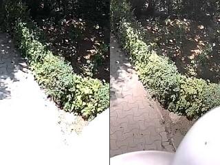 Эффективная IP камера без засветки или использование WDR